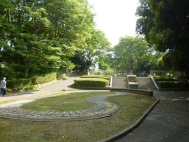 竹山中公園の画像1