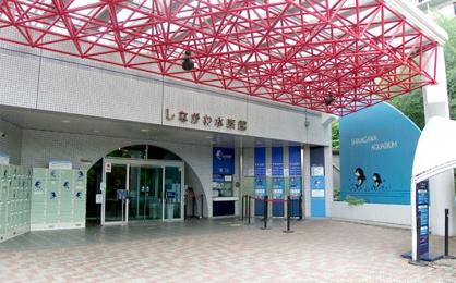 品川水族館の画像1