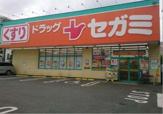 ドラッグセガミ大井町ガーデン店