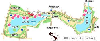 東京都立善福寺公園の画像3
