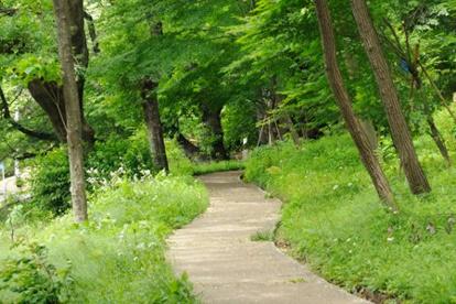 東京都立戸山公園の画像4