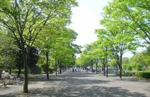 上府中公園小田原球場