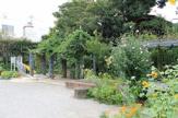 新宿区立下落合東公園