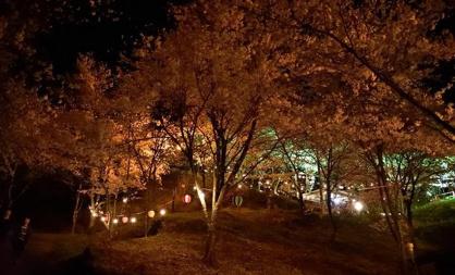 苗木城跡 遠山資料館の画像5