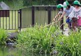 桑袋ビオトープ公園