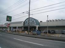 ザ・ダイソー マルエツ蓮田椿山店