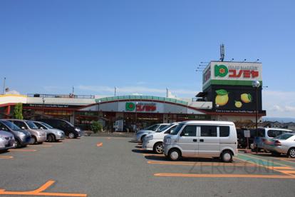 コノミヤ 深井店の画像1