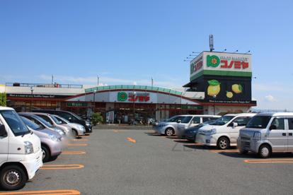 コノミヤ 深井店の画像3