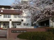 松戸市立新松戸西小学校