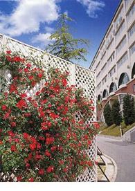 神戸星城高等学校の画像1