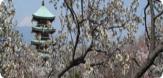香貫山公園