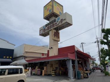 鶴ヶ島鮮魚センターの画像1