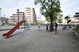 板橋区立志村公園