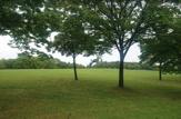 稲永東公園