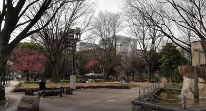 下園公園の画像1