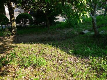 三松ヶ丘緑地の画像3
