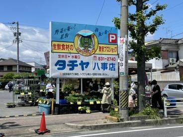 タチヤ 八事店の画像2