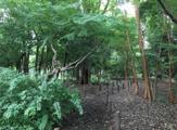 きたっぱら憩いの森