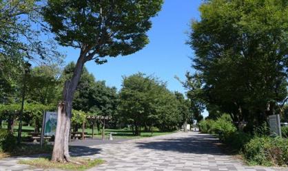郷土の森公園の画像1