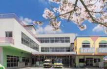 桂陽幼稚園の画像1