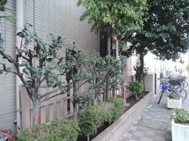 荒川区立 ひぐらし小学校の画像2