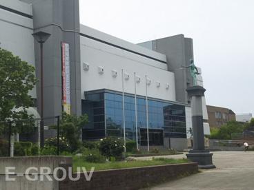 中央体育館の画像1