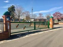 大山幼稚園
