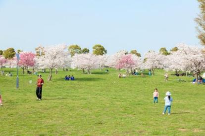 舎人公園の画像1