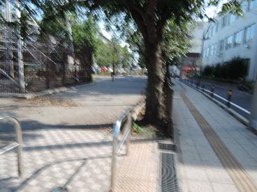 宮前公園の画像4