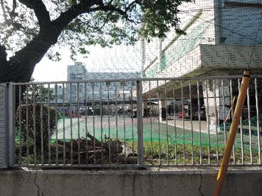 荒川区立 小台橋保育園の画像3