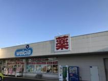 ウエルシア 小美玉羽鳥店