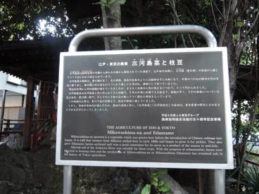 宮地稲荷神社の画像4