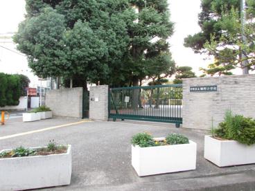 緑野小学校の画像4