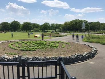 百合が原公園の画像1