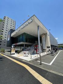 リトルマーメイド 江坂店の画像1