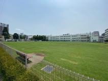 芝生広場 町田シバヒロ