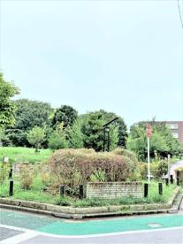 中村かしわ公園の画像1