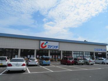 カワチ薬品石井町店の画像1