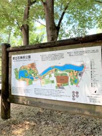 石神井公園の画像3