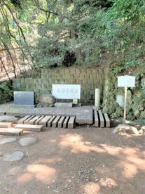 石神井公園の画像4