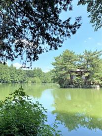 石神井公園の画像5