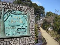 大古里育ちの森幼稚園(旧・百合ヶ丘幼稚園)
