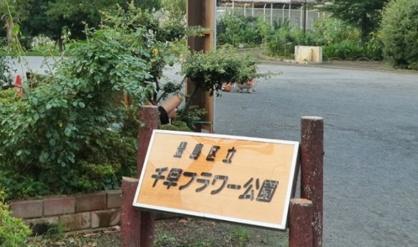 豊島区立千早フラワー公園の画像1