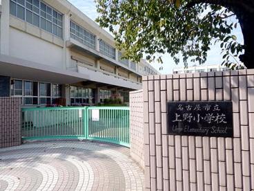 上野小学校の画像1