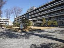 私立國學院大學久我山中学校