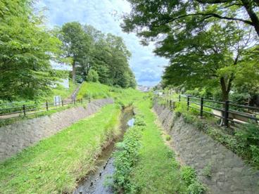 和泉川緑のウォークの画像1