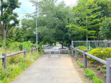 和泉川緑のウォークの画像2