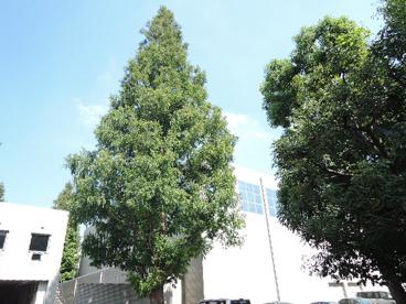 首都大学東京 荒川キャンパスの画像5
