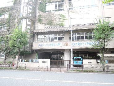 台東区立 金曾木小学校の画像1