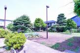 練馬区立シダ公園
